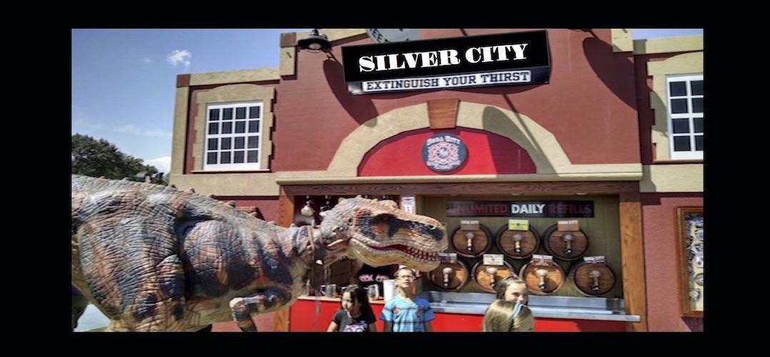 Silver City Mugs** Rentals ** Customization ** Book Us Now